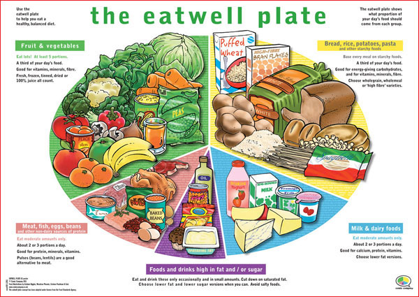 The EATWELL PLATE makes visualising your recommended daily food intake ...