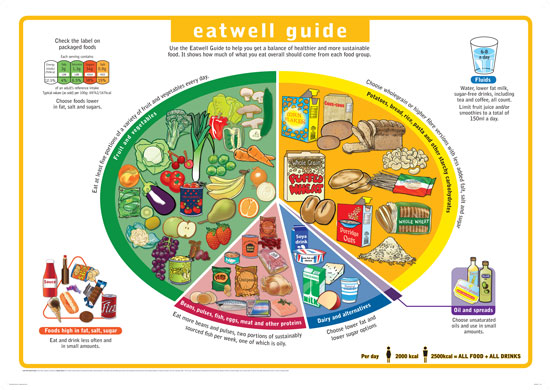 A Cancer Nutrition Guide - AICR